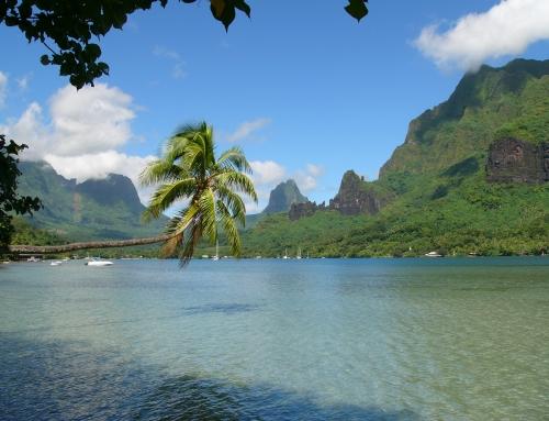 Ethno-beat #18, Polinezija