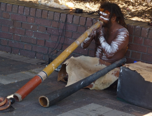 Ethno-beat #41, Didgerifonija